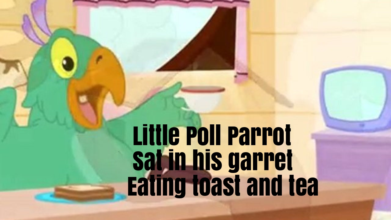 Little Poll Parrot