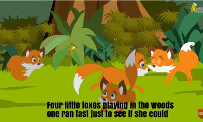 four little foxes playing in the woods