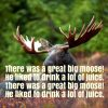 There was a Great Big Moose Nursery Rhyme Lyrics