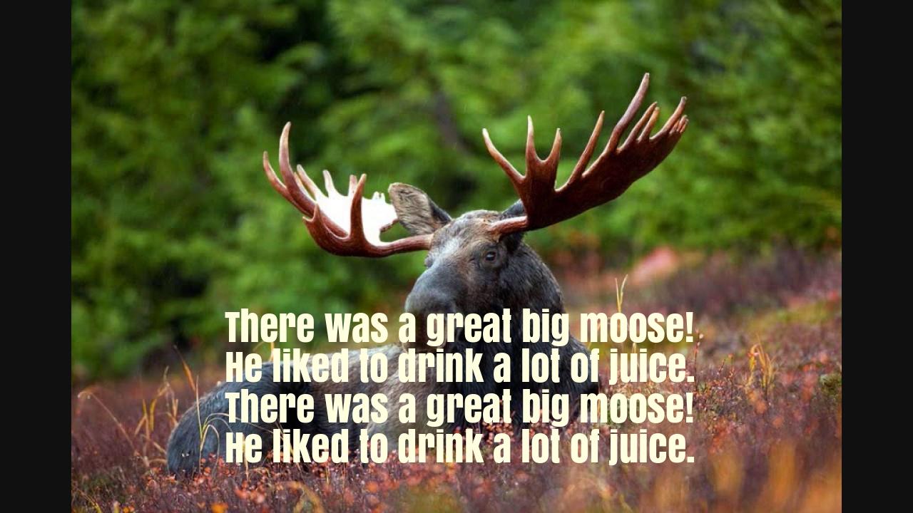 There was a Great Big Moose Nursery Rhyme Lyrics